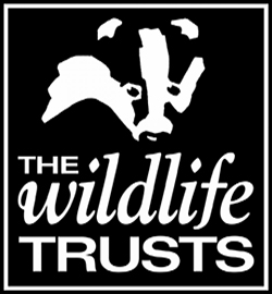 The Wildlife Trusts  logo FEATURE